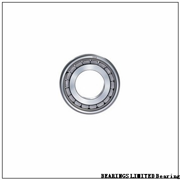 BEARINGS LIMITED 6040 MC3 Bearings